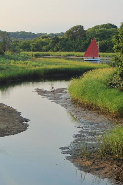 Wall Art - Photograph - Tidal Creek And Sailboat Morris Island Cape Cod by John Burk