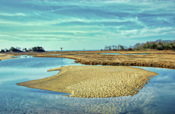 Photograph - Tidal Island In The Wetlands by Gary Slawsky