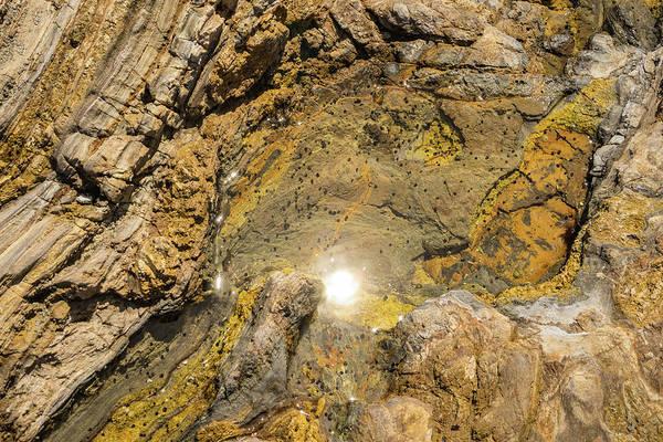 Photograph - Tidal Pool In Golden Earthtones by Georgia Mizuleva