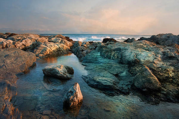Photograph - Tide Pool by Robin-Lee Vieira