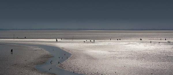 Photograph - Tidelands by Marc Huebner
