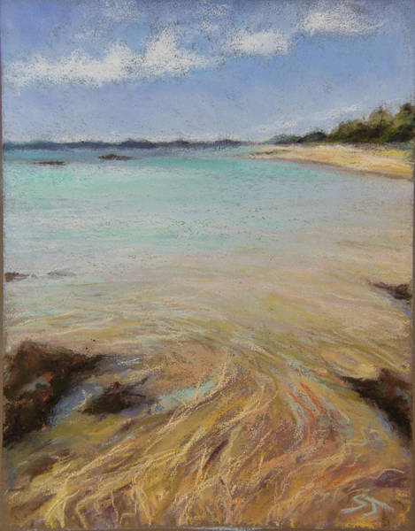 Painting - Tide's Retreat by Susan Jenkins