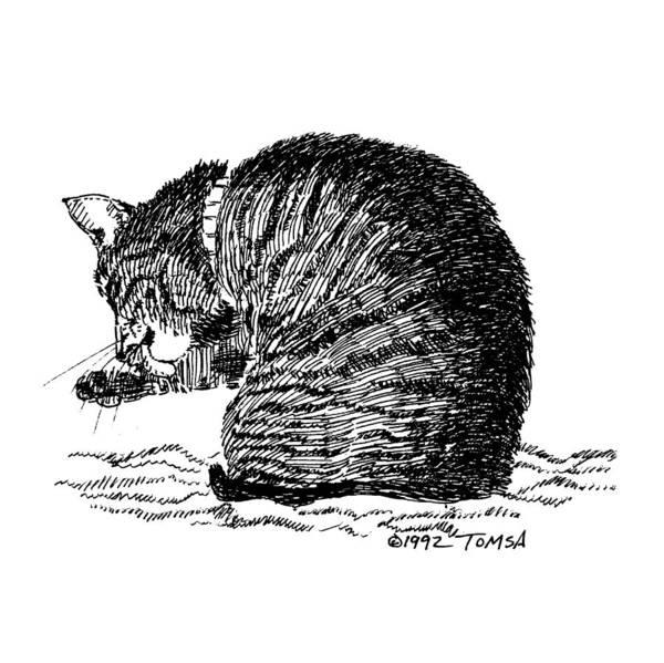 Tabby Drawing - Tidying Up - Art By Bill Tomsa by Bill Tomsa