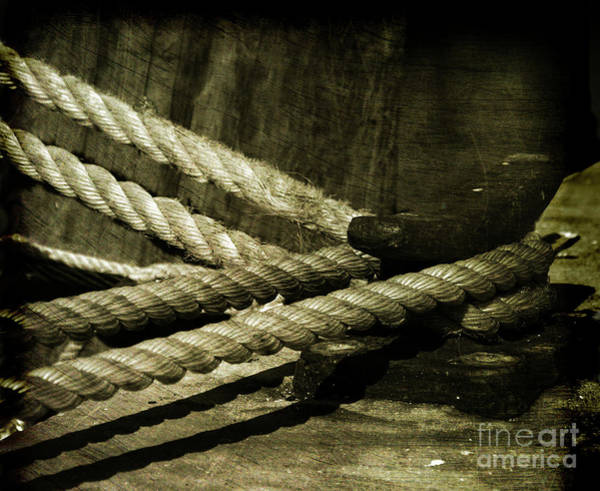 Wall Art - Photograph - Tied Down For Good by Susanne Van Hulst