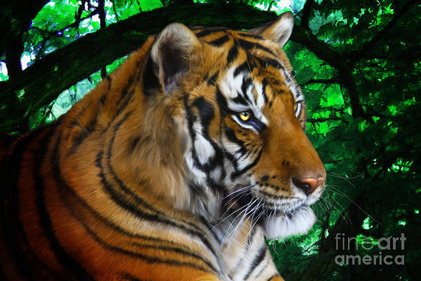 Digital Art - Tiger Contemplation by Tracey Everington