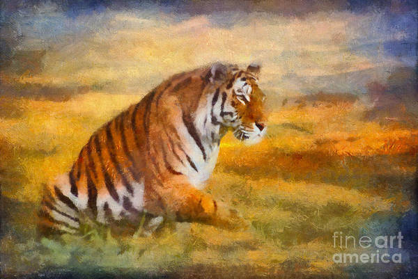 Feline Digital Art - Tiger Dreams by Aimelle