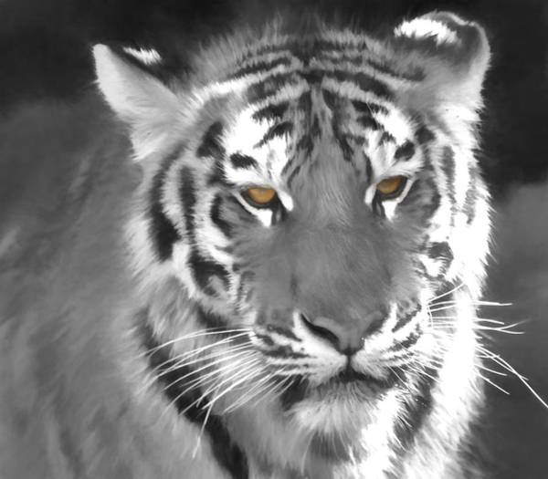 Food Chain Painting - Tiger Eyes by Dan Sproul