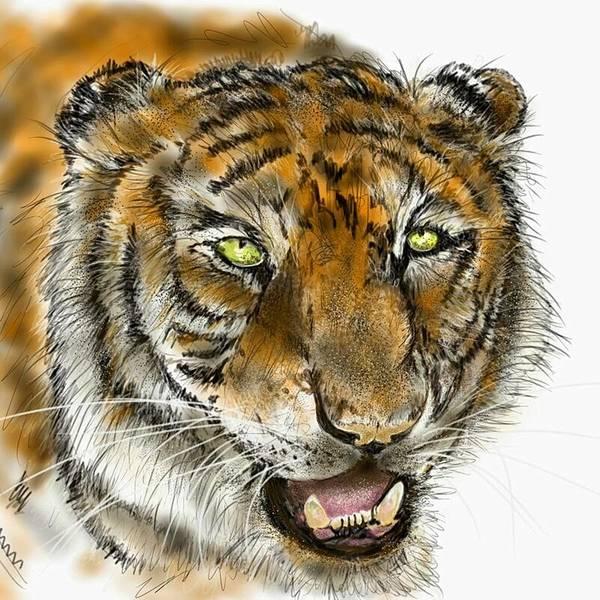 Digital Art - Tiger Face 2 by Darren Cannell