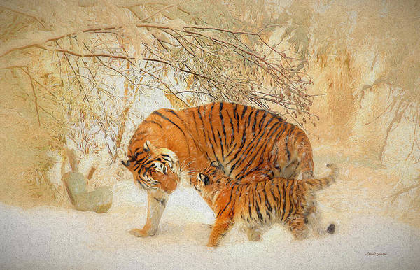 Painting - Tiger Family In A Blizzard - Painting by Ericamaxine Price