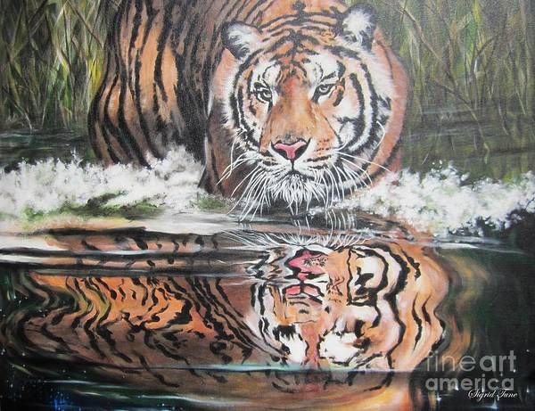 Painting - Tiger In Reflection- Horizontal by Sigrid Tune