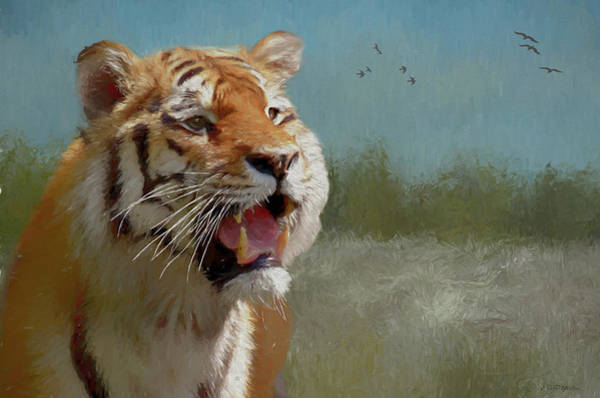 Painting - Tiger In The Field - Painting by Ericamaxine Price