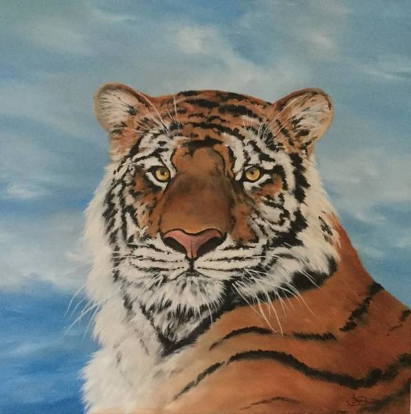 Bangladesh Painting - Bengal Tiger by Jean Walker