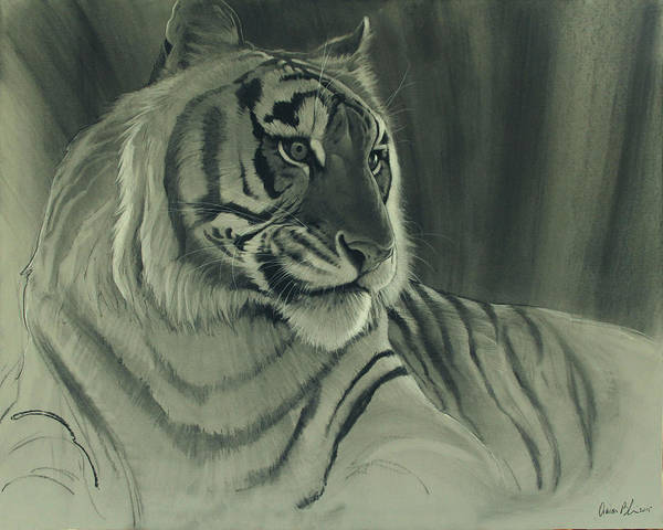 Wall Art - Digital Art - Tiger Light by Aaron Blaise