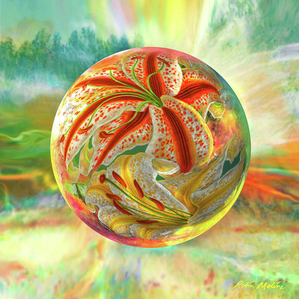 Globe Digital Art - Tiger Lily Dream by Robin Moline