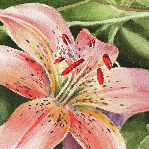 Design Painting - Tiger Lily Close Up by Irina Sztukowski