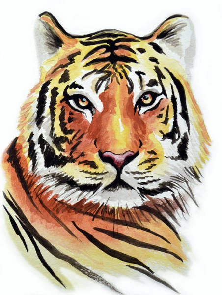 African Tiger Wall Art - Painting - Tiger Love by Amy Giacomelli