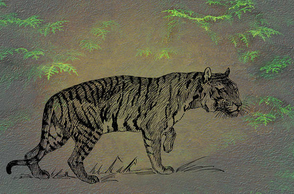 Mixed Media - Tiger by Movie Poster Prints