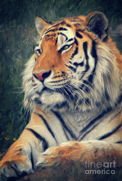Mixed Media - Tiger No 3 by Angela Doelling AD DESIGN Photo and PhotoArt