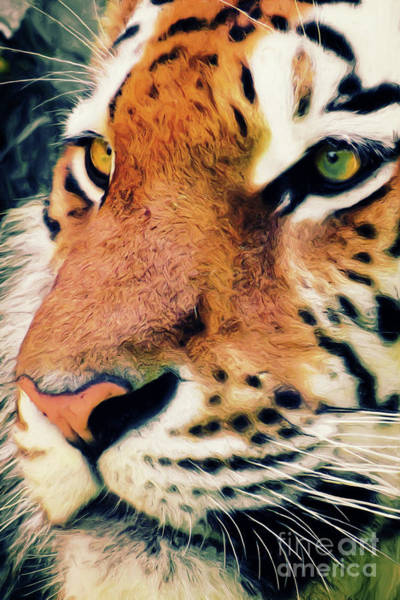 Mixed Media - Tiger No 5 by Angela Doelling AD DESIGN Photo and PhotoArt