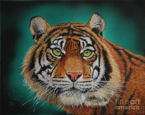 Painting - Tiger Portrait......amur Tiger by Bob Williams