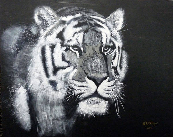 Painting - Tiger by Richard Le Page