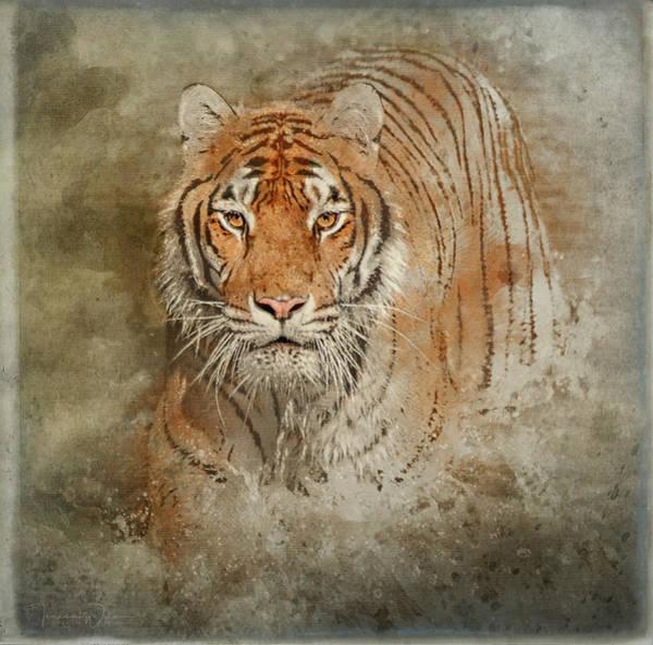 Mixed Media - Tiger Splash by Teresa Wilson