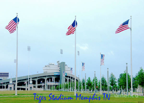 Photograph - Tiger Stadium Memphis Tn by Lizi Beard-Ward