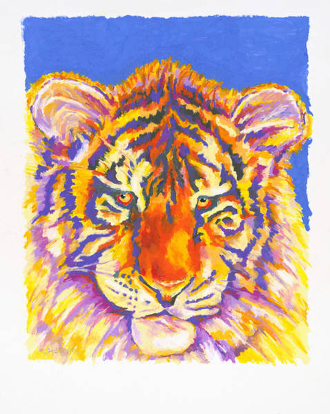 Wall Art - Painting - Tiger by Stephen Anderson