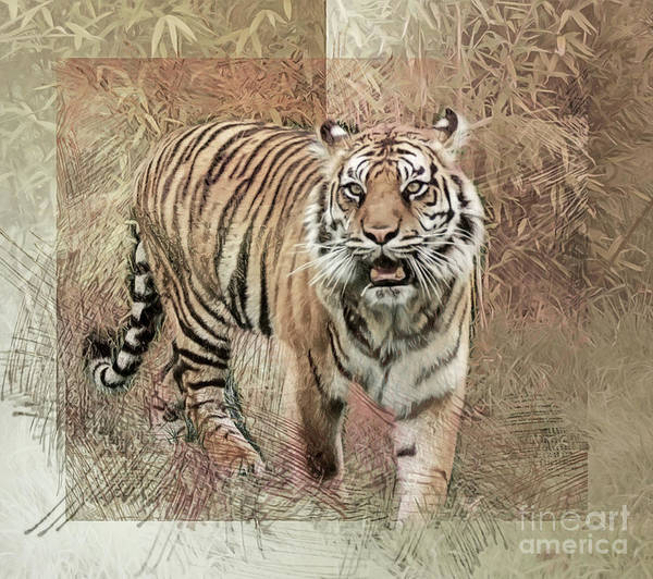Photograph - Tiger Tapestry by Brian Tarr
