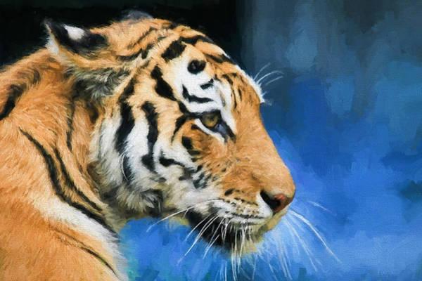Tigger Wall Art - Digital Art - Tiger Tiger Burning Bright by Roy Pedersen