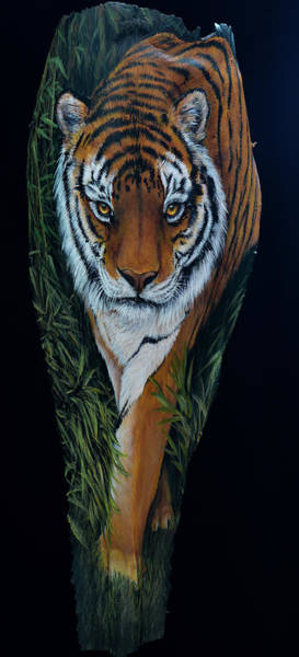 Painting - Tiger Tiger by Nancy Lauby