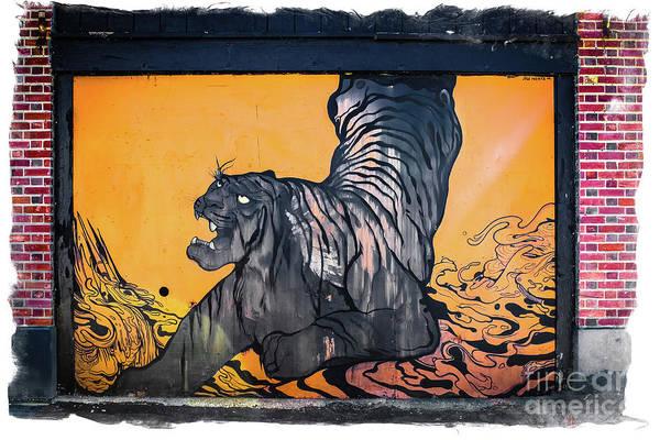 Wall Art - Photograph - Tiger Wall -graffiti by Colleen Kammerer