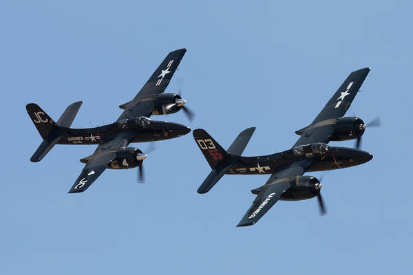 Photograph - Tigercats In Formation by John Daly