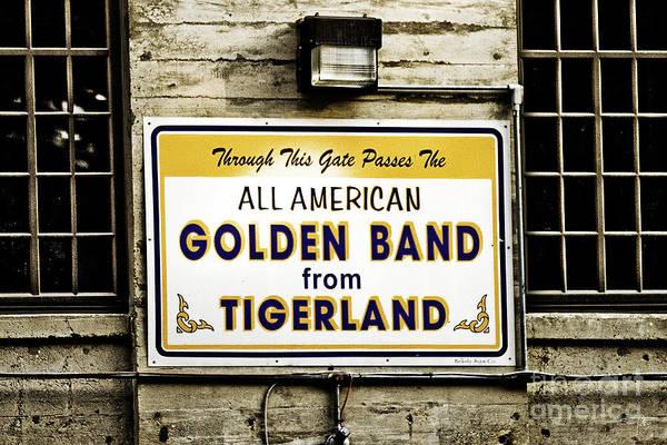 Wall Art - Photograph - Tigerland Band by Scott Pellegrin