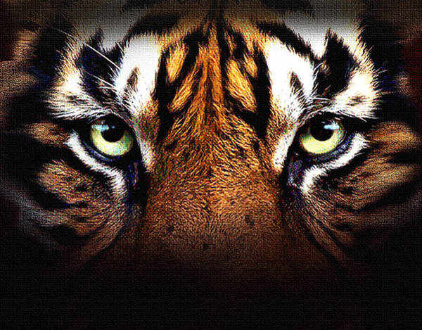Wall Art - Digital Art - Tiger's Eye by Robert Foster