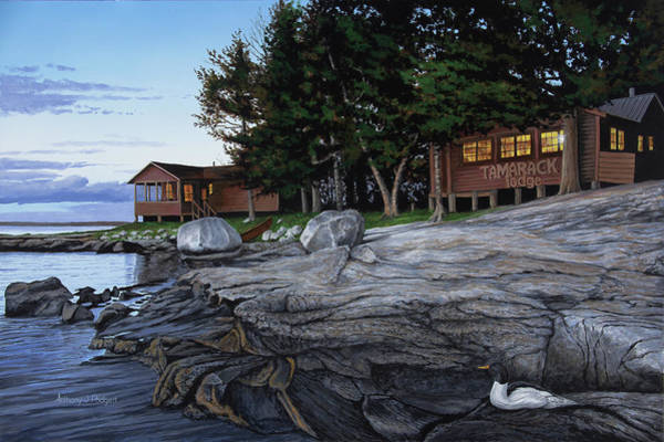 Loon Painting - Tight Lines At Tamarack by Anthony J Padgett