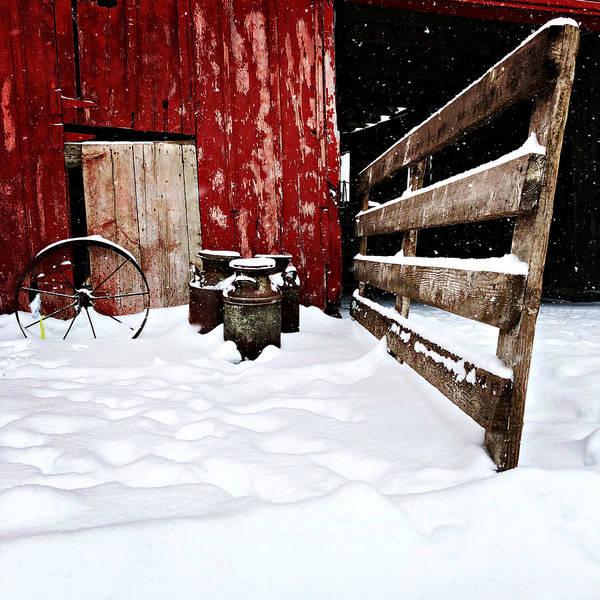 Photograph - Til The Cows Come Home by Julie Hamilton