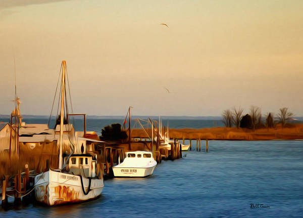 Photograph - Tilghman Island Maryland by Bill Cannon