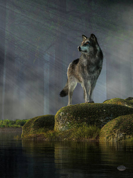 Susi Wall Art - Digital Art - Timber Wolf by Daniel Eskridge