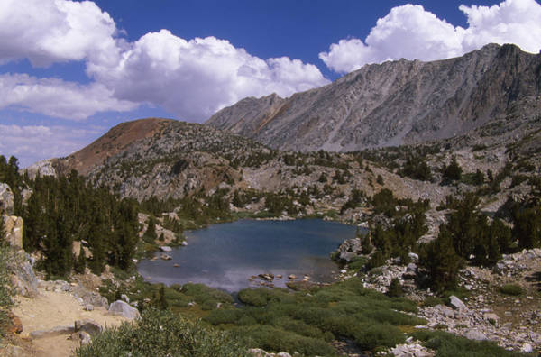 Timberline Photograph - Timberline Tarns Lake - Bishop Pass Tail by Soli Deo Gloria Wilderness And Wildlife Photography