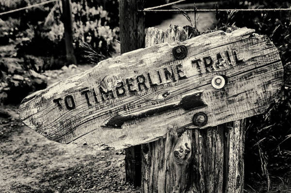 Wall Art - Photograph - Timberline Trail Sign Monchrome by John Trax