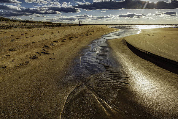Photograph - Time And Tide by Pete Federico