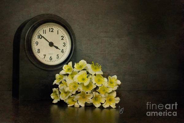 Wall Art - Photograph - Time by Cindy Garber Iverson