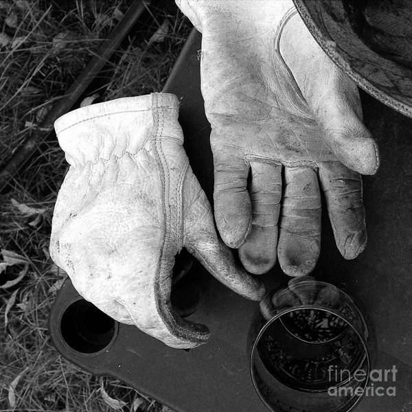 Photograph - Time For A Break by Rosanne Licciardi