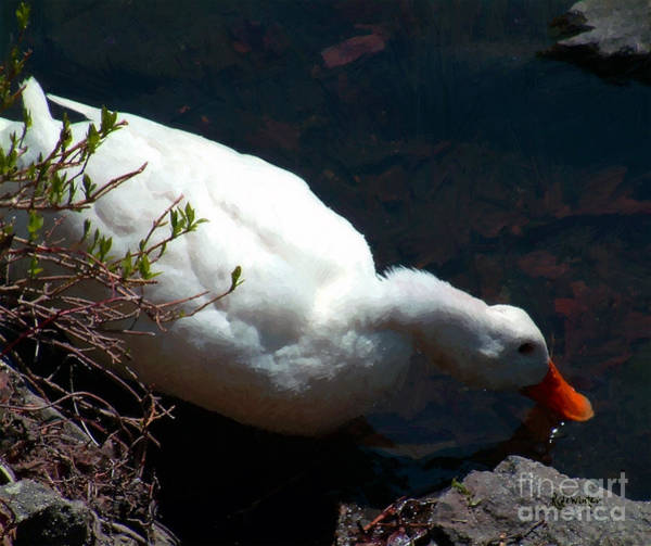 Painting - Time For A Drink by RC DeWinter