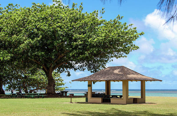 Photograph - Time For Anini Beach by Bonnie Follett