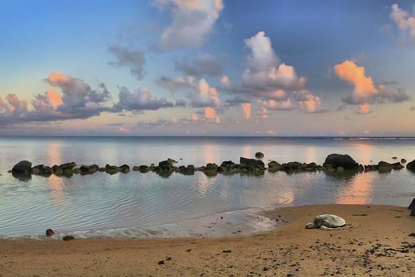 Hawaiiana Photograph - Time Out by DJ Florek