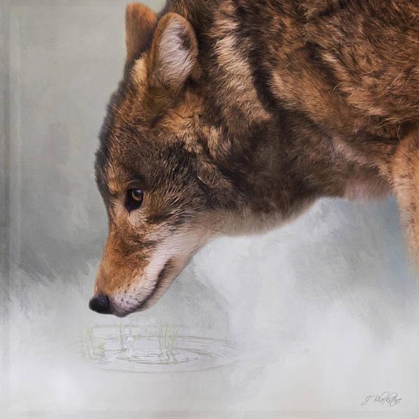 Photograph - Time To Breathe - Wolf Art by Jordan Blackstone