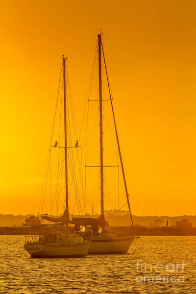 Wall Art - Photograph - Time To Sail by Marvin Spates