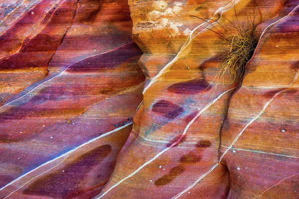 Valley Of Fire State Park Photograph - Timelines by Darren White